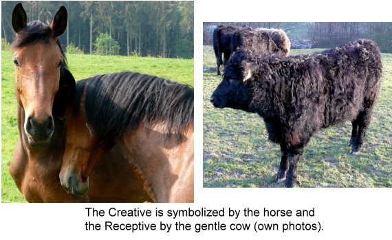 1071-the-creative-is-symbolized-by-the-horse-and.jpg