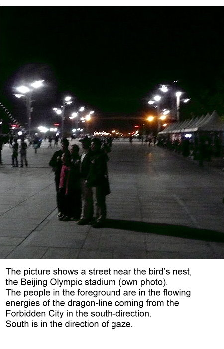 pu-this-street-near-the-birds-nest-is-a-dragon-line.jpg