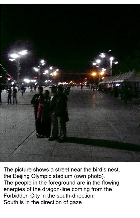 pu-this-street-near-the-birds-nest-is-a-dragon-line.jpg