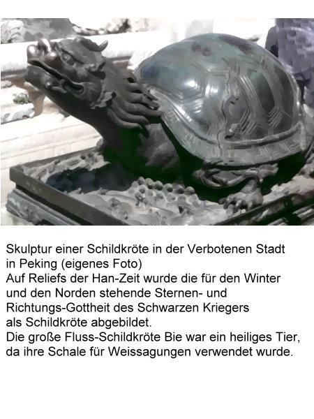 stern-3-skulptur-einer-schildkrote.jpg
